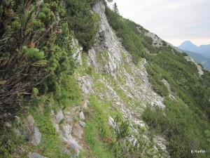 Helmeskogel 1633m über den Kaiserweg Nr 837