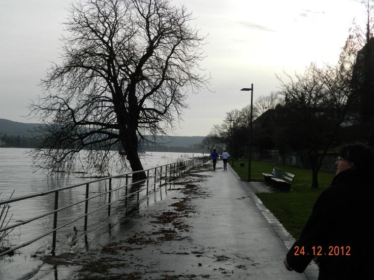 Bonn-027