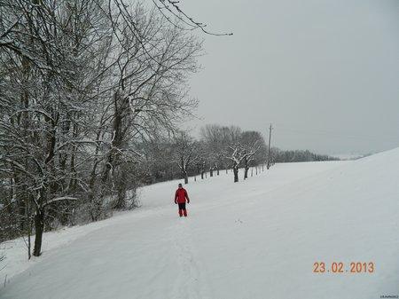 Scharten 23.02