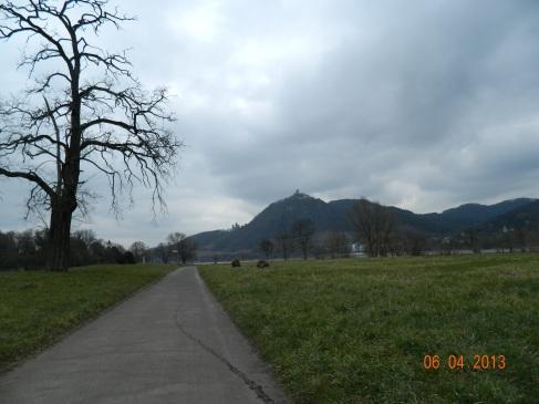 Rückweg am Rhein nach Mehlem