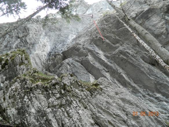 die Leiter (roter Pfeil)